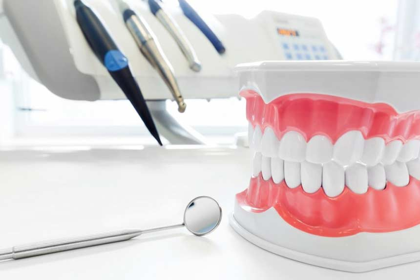 dentures dental jaw model